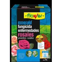ENFERMEDADES ROSALES