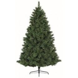 ONTARIO PINE CHRISTMAS TREE...