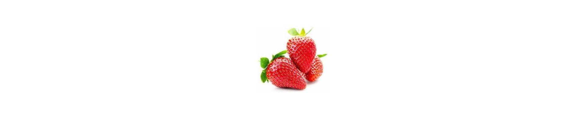 Plantar fresas - Comprar plantas de fresas