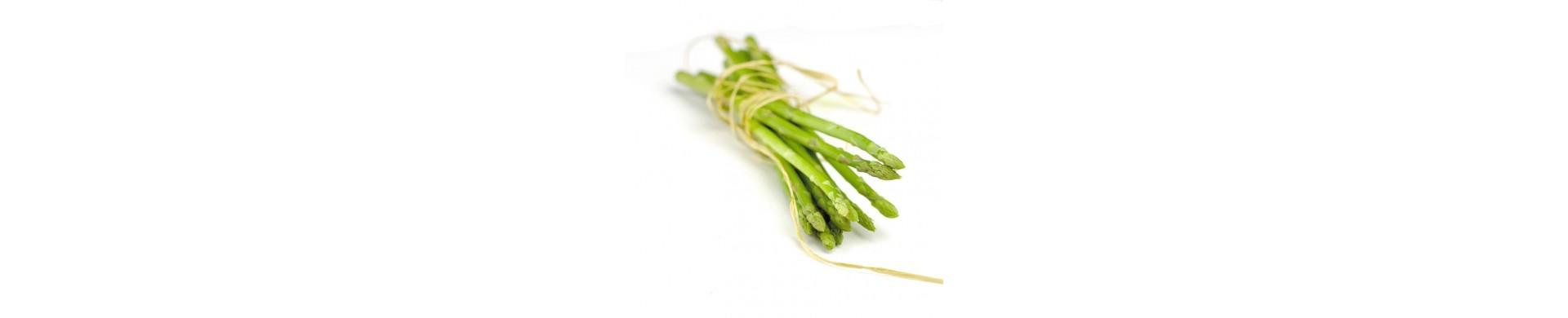 Plant asparagus - Buy asparagus plants