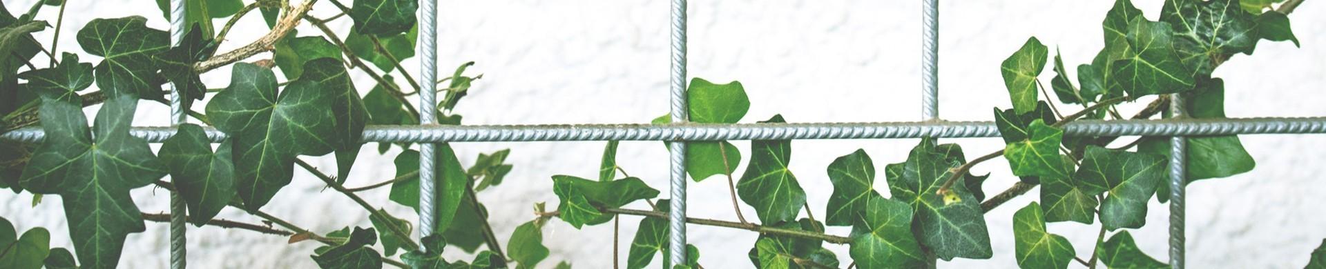 Accesorios jardin - Comprar accesorios de jardin